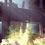 State of Decay 2 nos sorprende con nuevas imágenes conceptuales