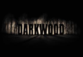 Los desarrolladores de Darkwood están interesados en traerlo a Xbox One