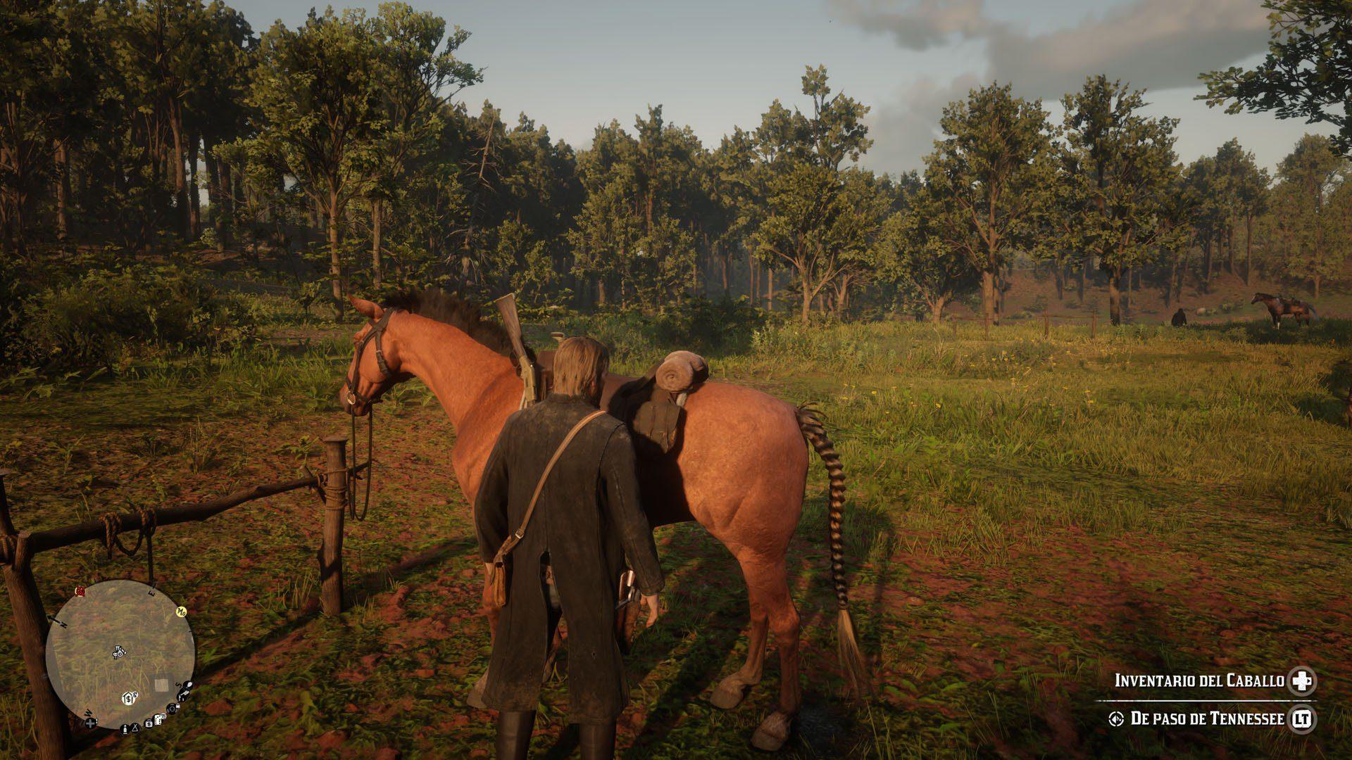 Análisis de Red Dead Redemption 2