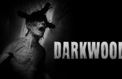Análisis de Darkwood