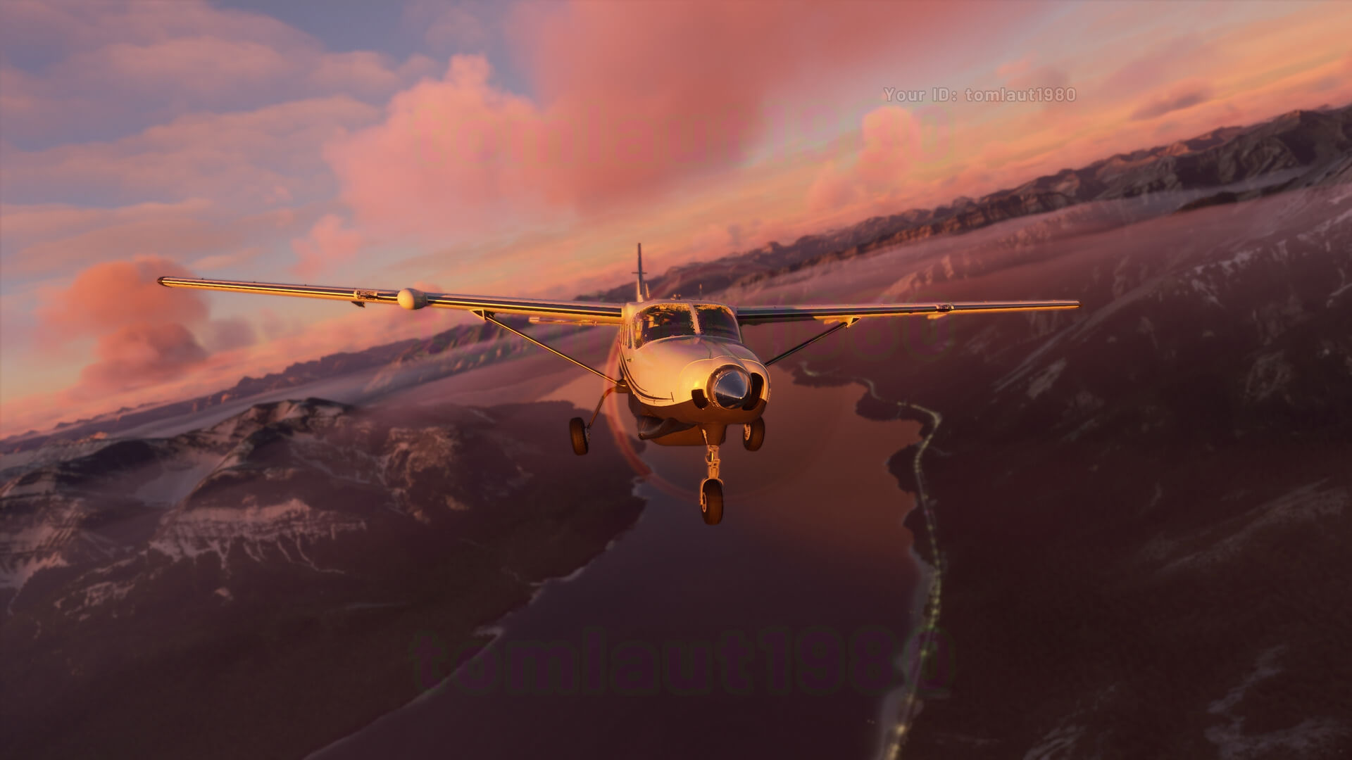 Microsoft Flight Simulator captura 3 avioneta