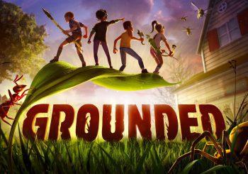 Ya disponible Grounded para instalar de manera anticipada