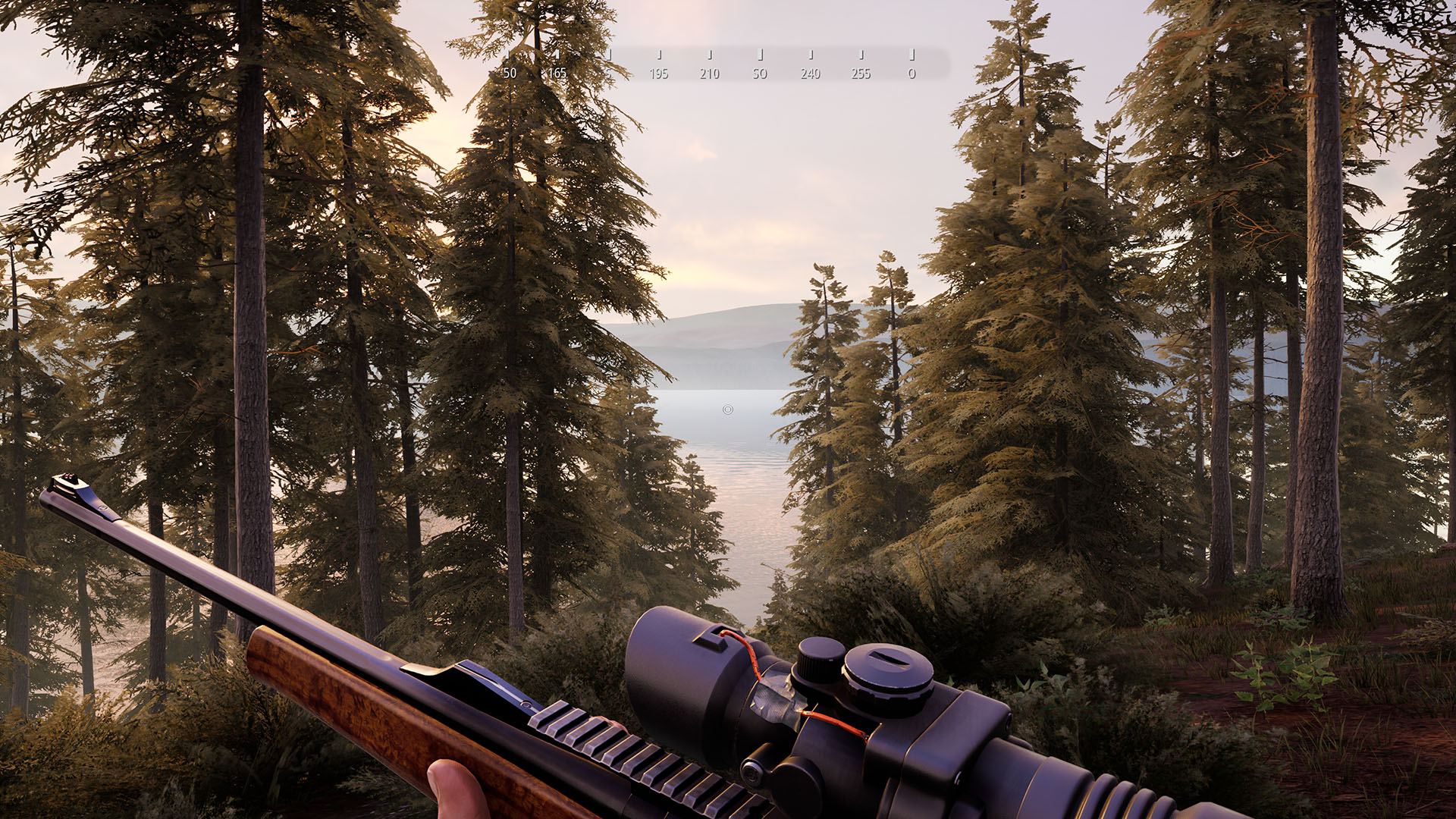 Hunting Simulator 2 (3)