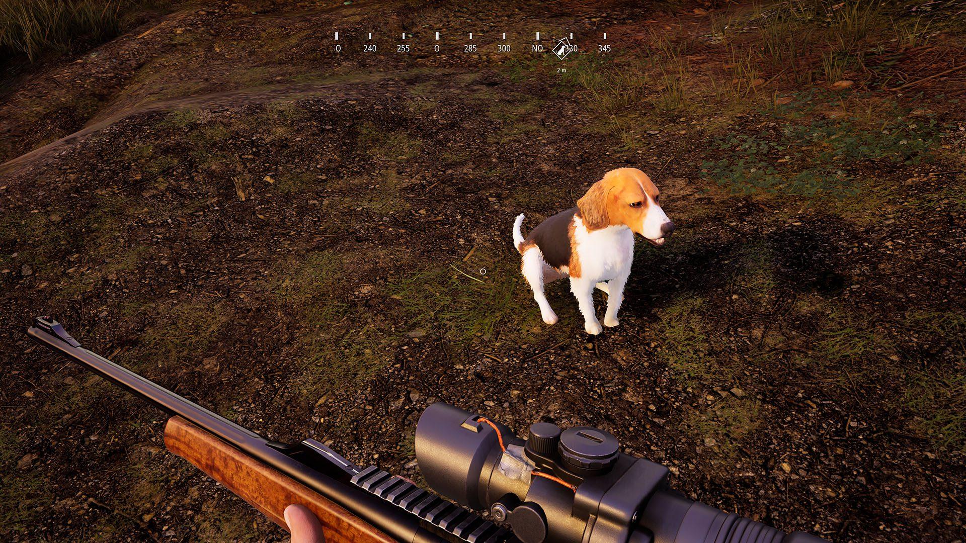Hunting Simulator 2 (4)