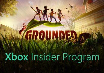 Grounded presenta su propio programa Insider en Windows y Xbox